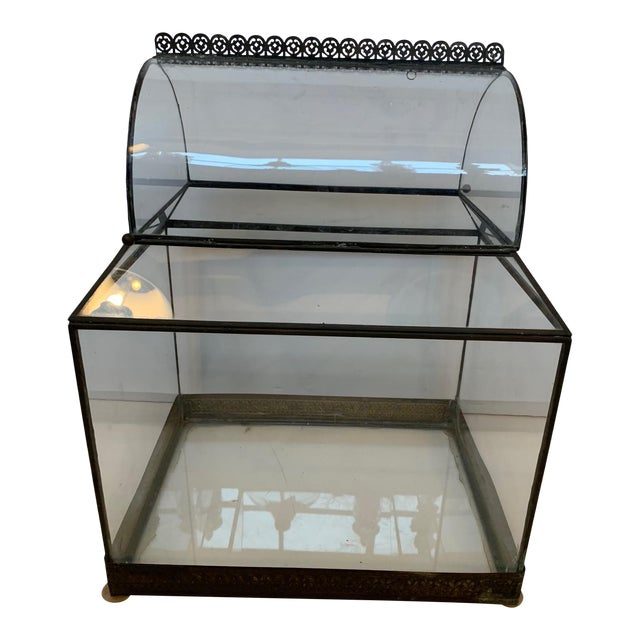 Vintage Glass and Metal Terrarium For Sale