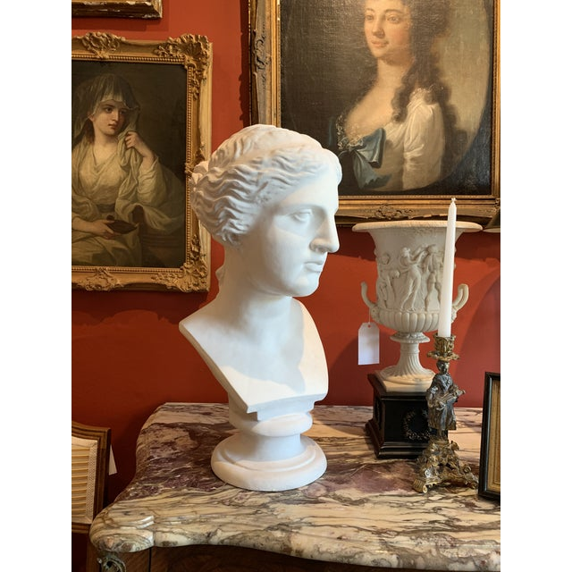 Neoclassical Style Large Plaster Bust of Aphrodite For Sale - Image 4 of 11
