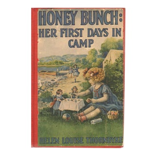 Honey Bunch: Her First Days in Camp