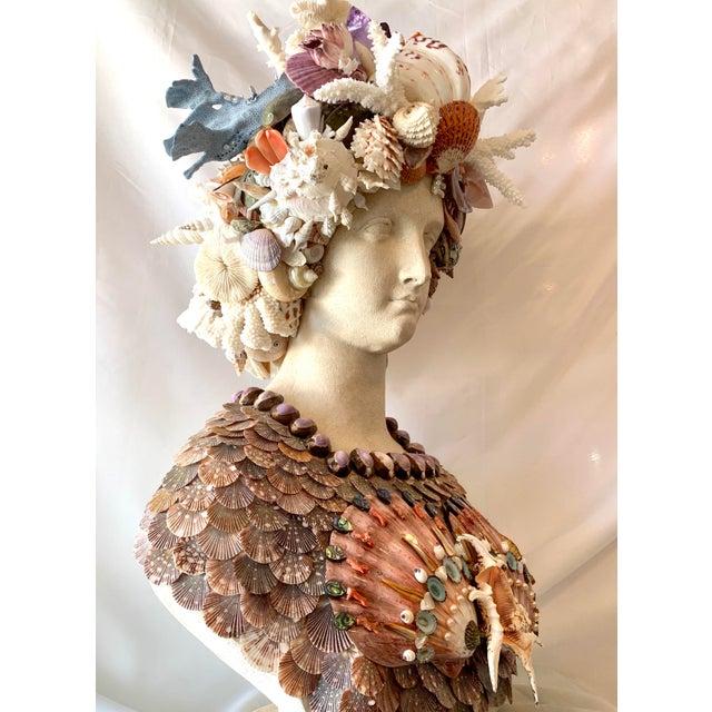 Christa's South Seashells La Sirena Seashell Bust For Sale - Image 4 of 11