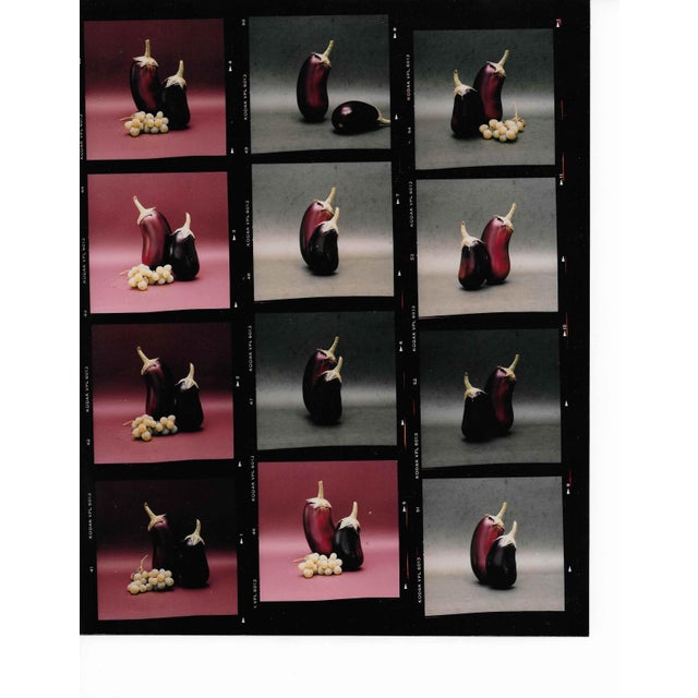 Fruit Still lIfe Color Photograph Contact Sheet 1980s For Sale - Image 4 of 4