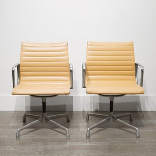 Mid-Century Herman Miller Ea108 Leather Office Management Chairs C.1960-1970 Preview