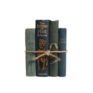 Vintage Decorative Book Gift Set: Children's Stories in Teal For Sale