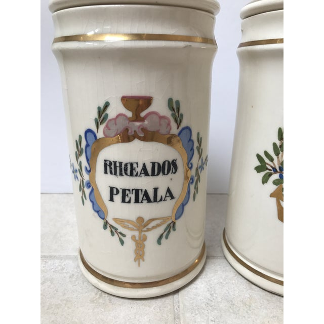 Antique Apothecary Jars - A Pair For Sale - Image 4 of 6