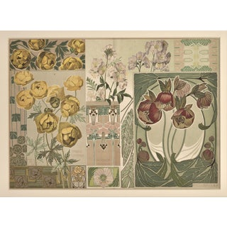 1900 Botanic Decorative Design Chromolithograph, Matted For Sale