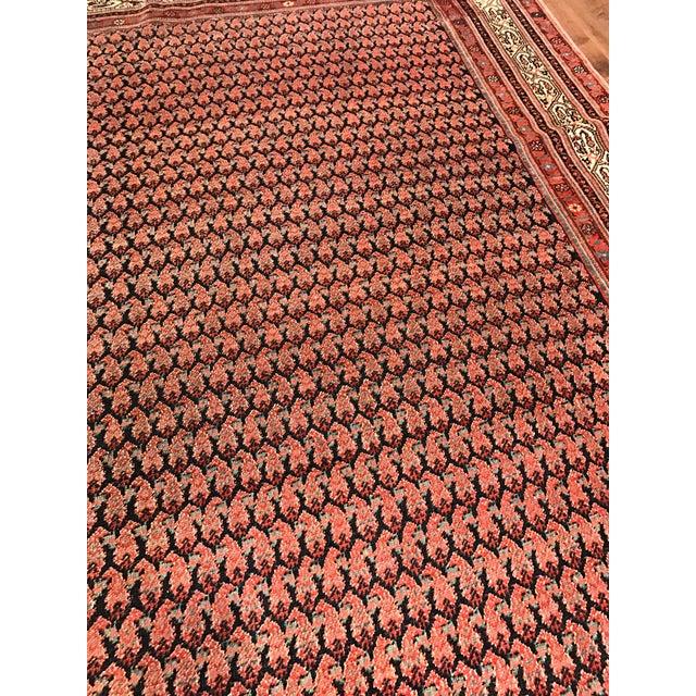 Antique Persian Seraband Gallery Carpet - Image 3 of 4