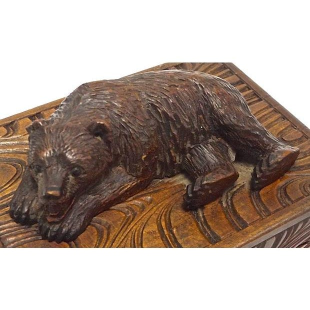 Antique Black Forest Carved Bear Box - Image 4 of 5