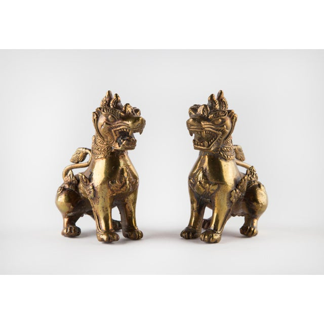 Solid Brass Thai Foo Dogs For Sale - Image 9 of 9