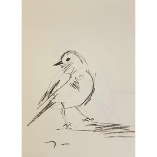 Original Small Bird Charcoal Paper Sketch Drawing Signed by Jose Trujillo For Sale