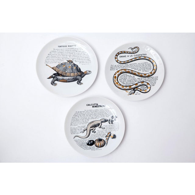 """1960s Rare Set of 12 """"Cook Plates"""" by Piero Fornasetti for Fleming Joffe Ltd For Sale - Image 5 of 8"""