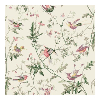 Hummingbirds With a Cream Background Cotton Fabric - Sample For Sale