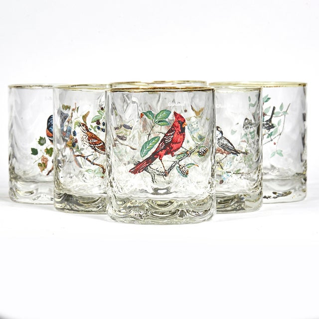 Mid 20th Century 1960s Glass Bar Tumblers W/ Birds, Set of 6 For Sale - Image 5 of 5