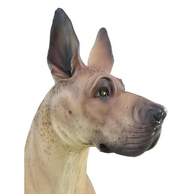 Great Dane Life Size Dog Statue For Sale - Image 9 of 11