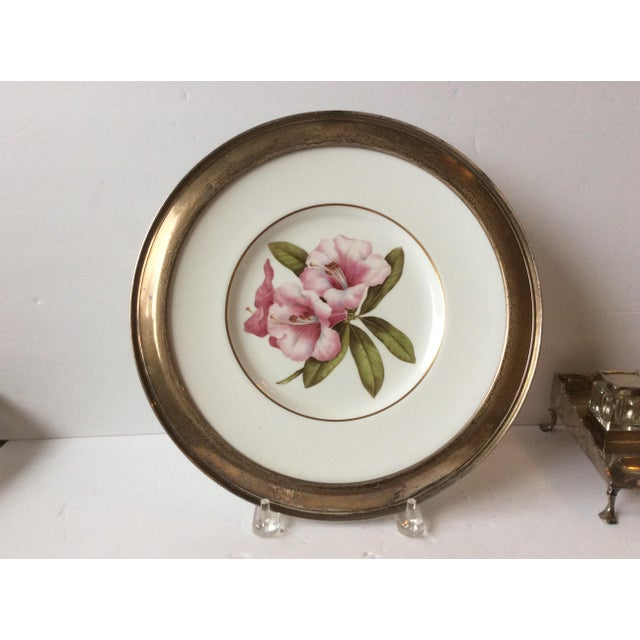 Spode Floral Plate With Shreve Sterling Silver Rim For Sale - Image 5 of 6
