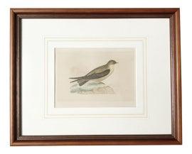 Image of Coastal Prints