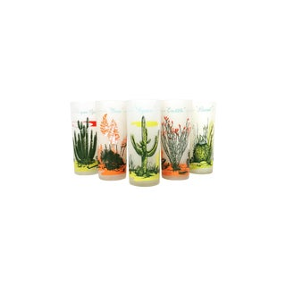 Vintage Cactus Tumblers - Set of 6