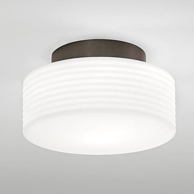 Capri Black Bronze Ceiling Light For Sale - Image 4 of 4