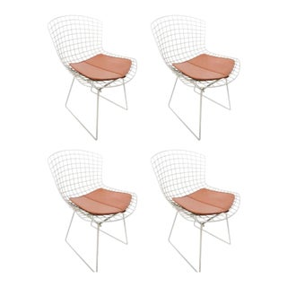 1960s Vintage Knoll Bertoia Chairs- Set of 4 For Sale