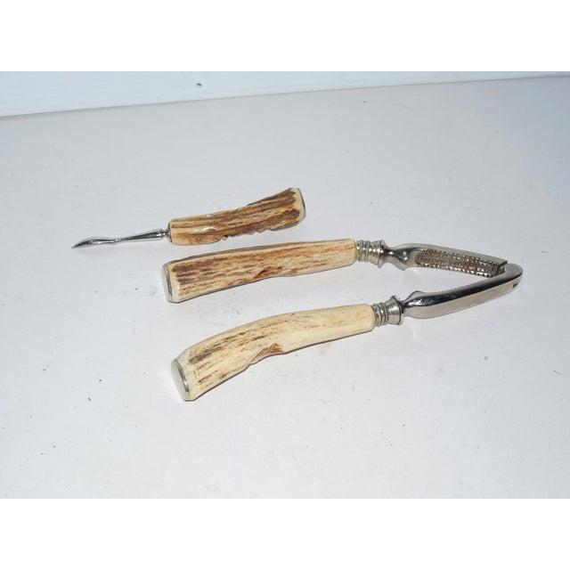 Vintage German Carved Antler Nut Set For Sale - Image 5 of 6