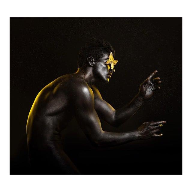 Damián Siqueiros, Golden Entropy 1, 2016 For Sale