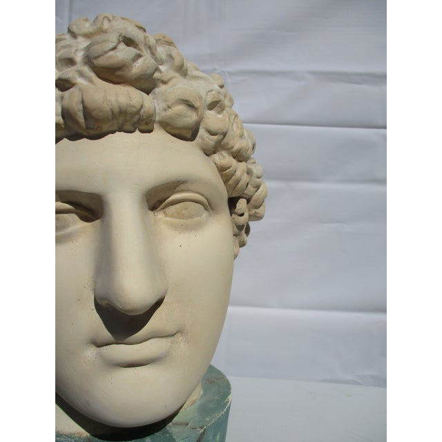 Plaster 1980s Neoclassical Head of Greek Youth in Plaster Sculpture For Sale - Image 7 of 8