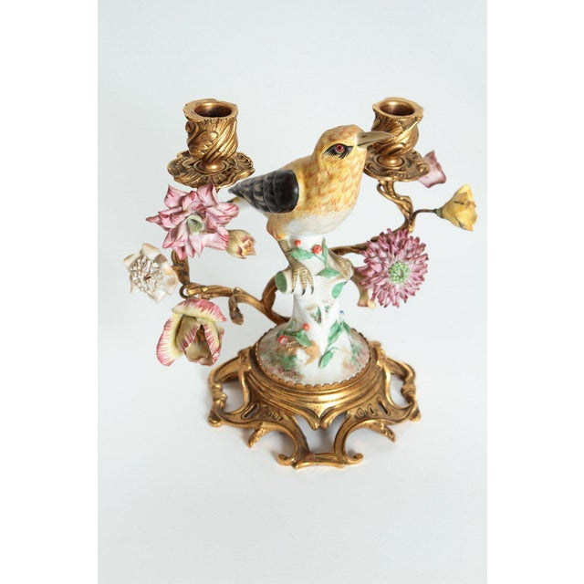 Pair of Early 20th Century Italian Porcelain Birds Mounted as Candelabra For Sale - Image 4 of 13