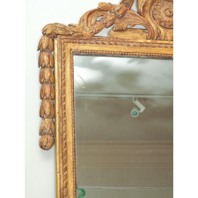 Finely Carved Louis XVI Style Mirror - Image 4 of 8