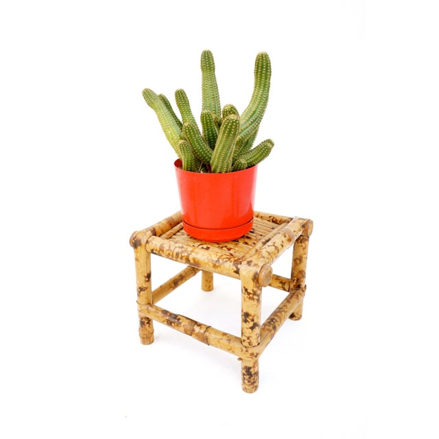 Asian Vintage Tortoise Bamboo Plant Stand For Sale - Image 3 of 11