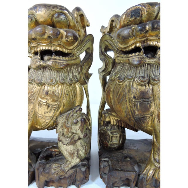Red Antique Chinese Carved Gilt Wood Temple Foo Lions- a Pair (Foo Dogs) For Sale - Image 8 of 9