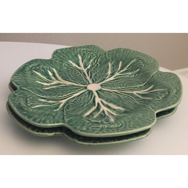 Green Bordallo Pinheiro Cabbage Leaf Majolica Plates - a Pair For Sale - Image 8 of 10