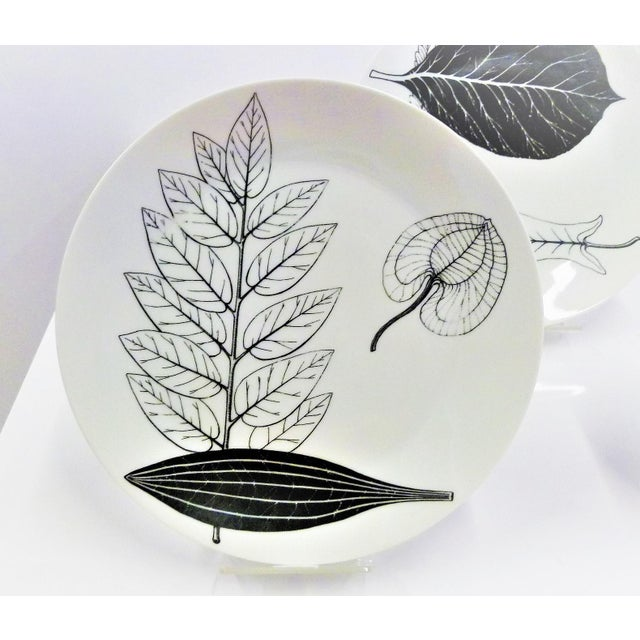 Set of three black and white porcelain Foglie or Foilage plates by Fornasetti Atelier in Milan from the 1950s. Each...