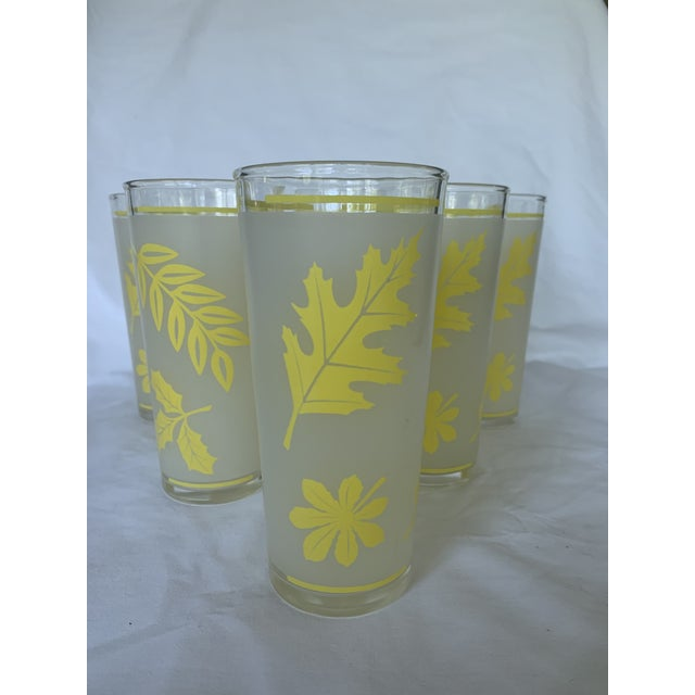 Found these amazing yellow set of six tumblers at an estate sale. This lovely woman spent her life collecting glassware.