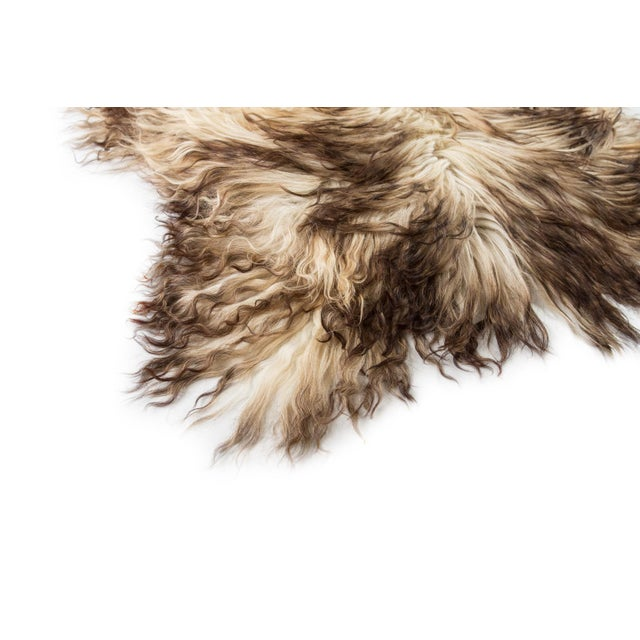 """Children's Contemporary Hand-Tanned Sheepskin Pelt Rug - 2'4""""x4'0"""" For Sale - Image 3 of 6"""