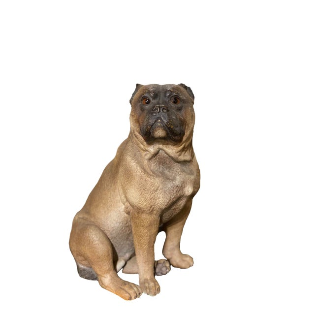 English Terra Cotta Pug With Glass Eyes For Sale - Image 4 of 4