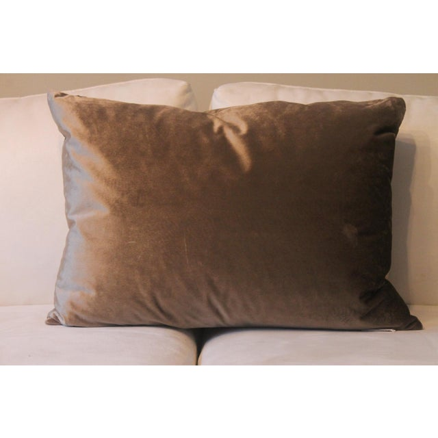 Pair of gray solid velvet pillows with great hand and feel. The 100 percent feather insert is included. These pillows work...