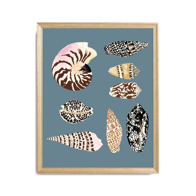 """""""Fiji Shells in French Blue"""" Contemporary Giclee Print by Sarah Gordon For Sale - Image 4 of 5"""