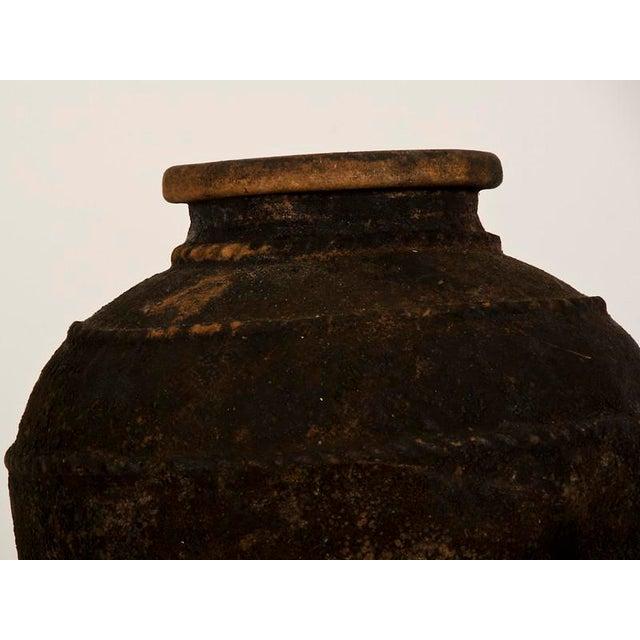 19th Century Italian Raised Decoration Terra Cotta Urn For Sale In Houston - Image 6 of 8