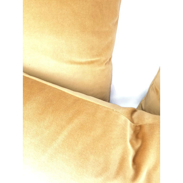 F. Schumacher Gainsborough Mocha Velvet Pillow Cover For Sale In Portland, OR - Image 6 of 7