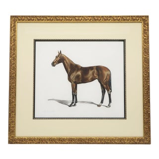 Framed and Signed Color Lithograph by Artist J. Rivet For Sale