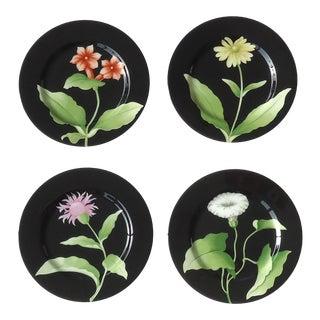 Fleurs De Minuit Vintage Fitz & Floyd Floral Plates - Set of 4