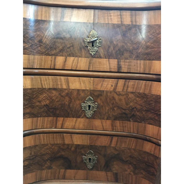 Brown 18th Century Italian Burl Walnut Chest of Drawers For Sale - Image 8 of 10