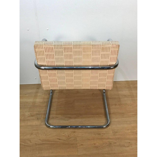 Mies Van der Rohe Eight Mid-Century Brono Tubular Chairs, Designed by Ludwig Mies van der Rohe For Sale - Image 4 of 6