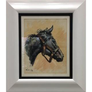 Spanish Horse Portrait, 1958 For Sale