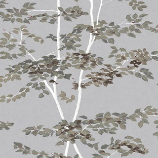 """Lewis & Wood Beech Silverstone Extra Wide 52"""" Botanic Style Wallpaper Sample For Sale"""
