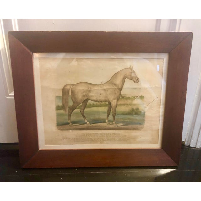 Very rare Currier & Ives equestrian lithograph by James Cameron (b.1828). Published in 1880, it features the celebrate...