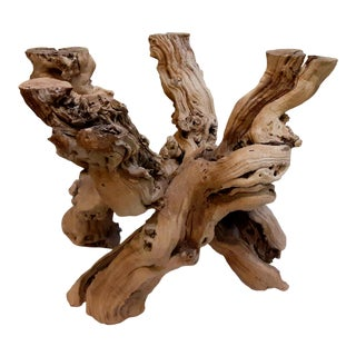 Mid 20th Century Mid-Century Modern Driftwood Tree Root Coffee Table Base For Sale