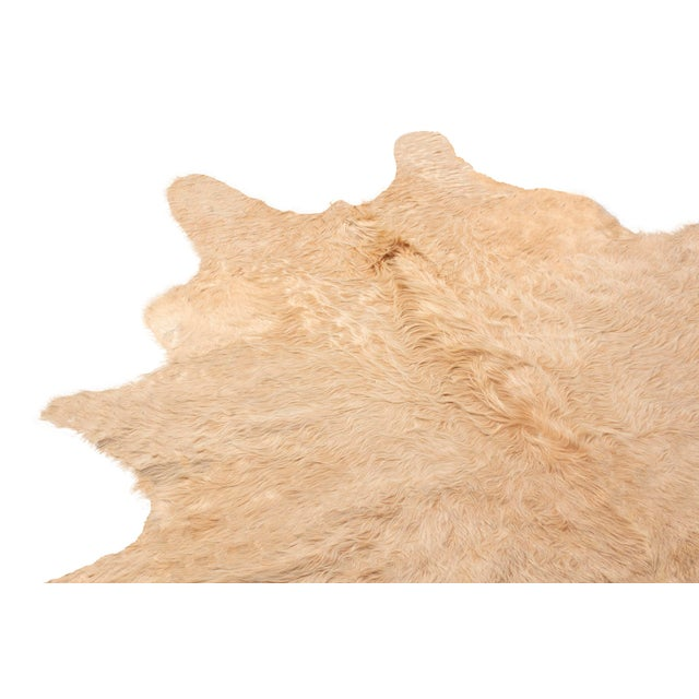 Cabin Beige Long Hair Large Cowhide Rug - 8′ × 8′11″ For Sale - Image 3 of 7
