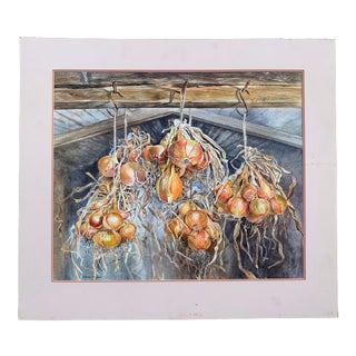 1990s Still Life of Onions Watercolor Painting by Gillean Whitaker, Framed For Sale