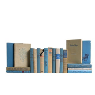 Midcentury Readings in Khaki & Cornflower : Set of Twenty Decorative Books For Sale