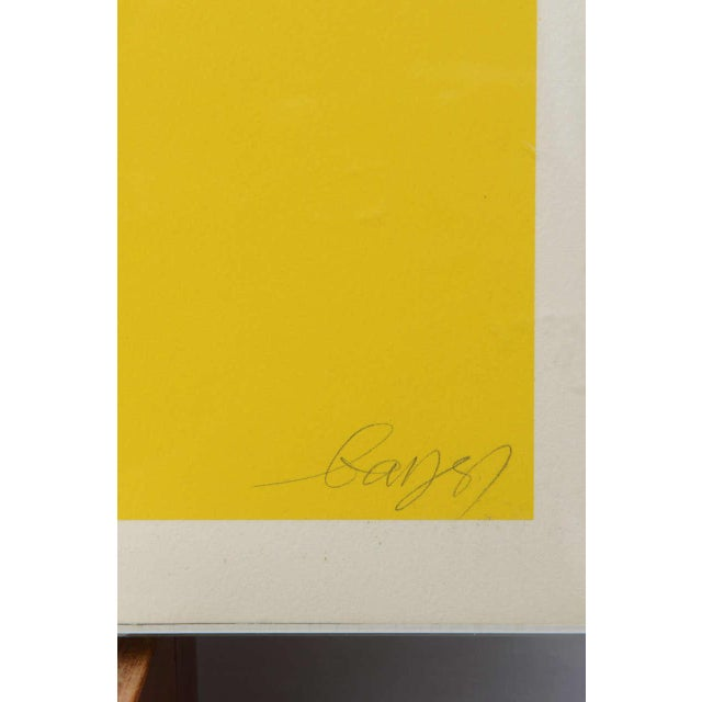 Gorgeous Serigraph by Herbert Bayer, Austria, 1973 For Sale - Image 9 of 9